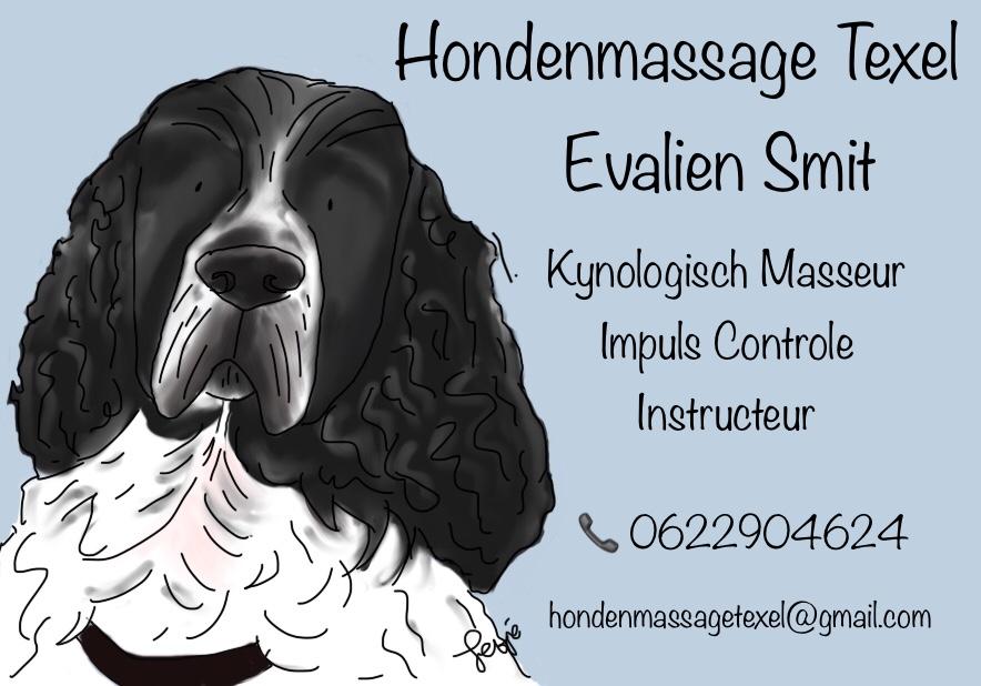 hondenmassage texel